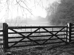 Wooden Gates Free Delivery On Everything